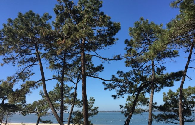 Bons plans pour un week end Surf à Arcachon - le Pyla