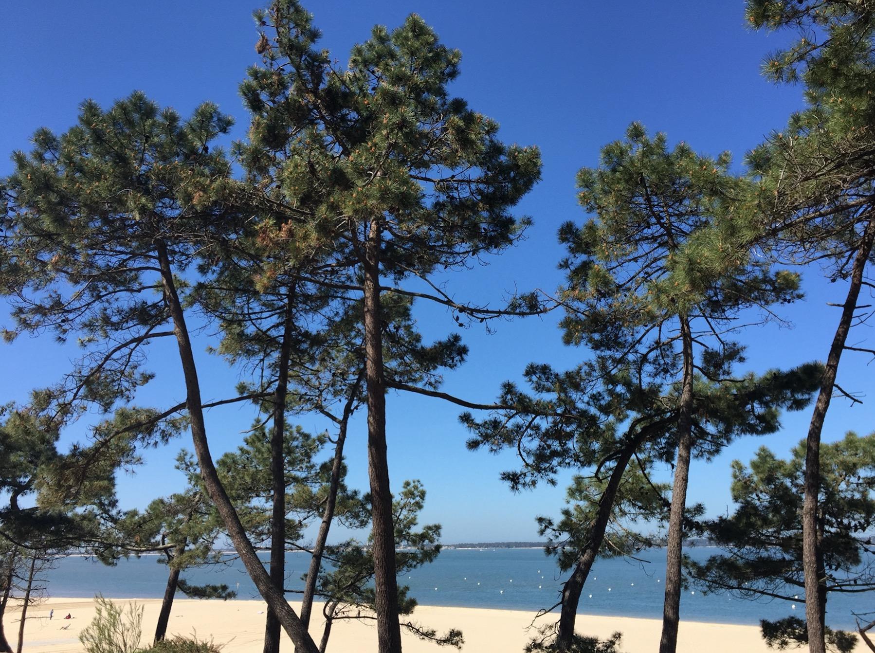 Bons plans pour un week end Surf à Arcachon - le Pyla