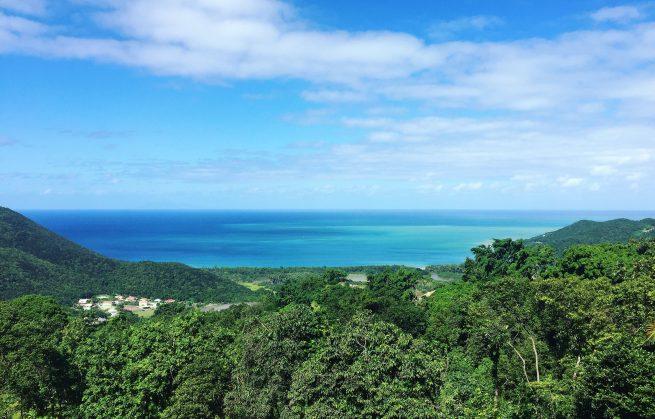 Guadeloupe : Tendacayou, l'hôtel perché dans les arbres